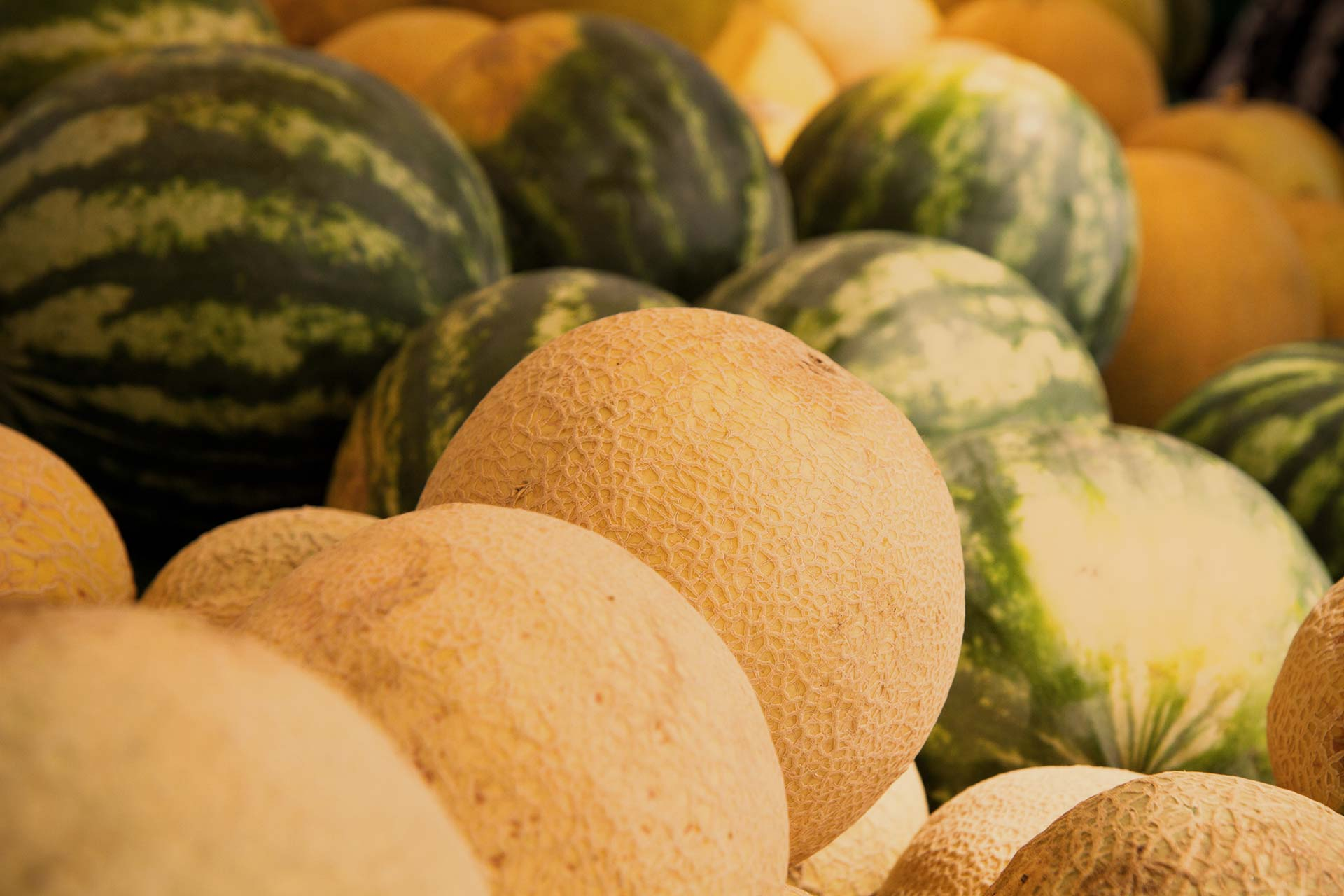 Close-up of assorted melons