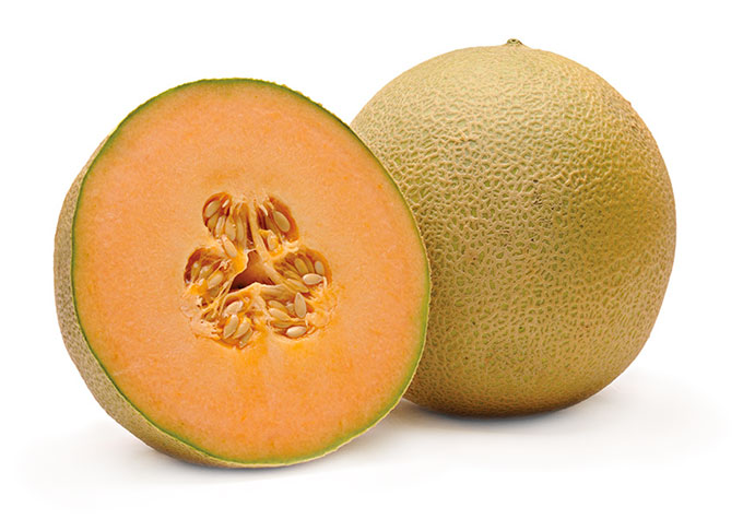 Fisher Ranch Corp. Harper Cantaloupe melon